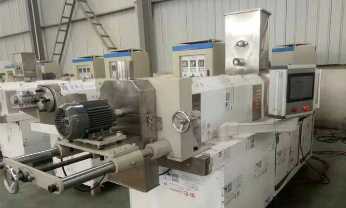 Our Workshop For Puff Snacks Extruding Line